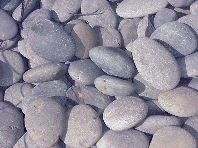 Mexican Pebbles