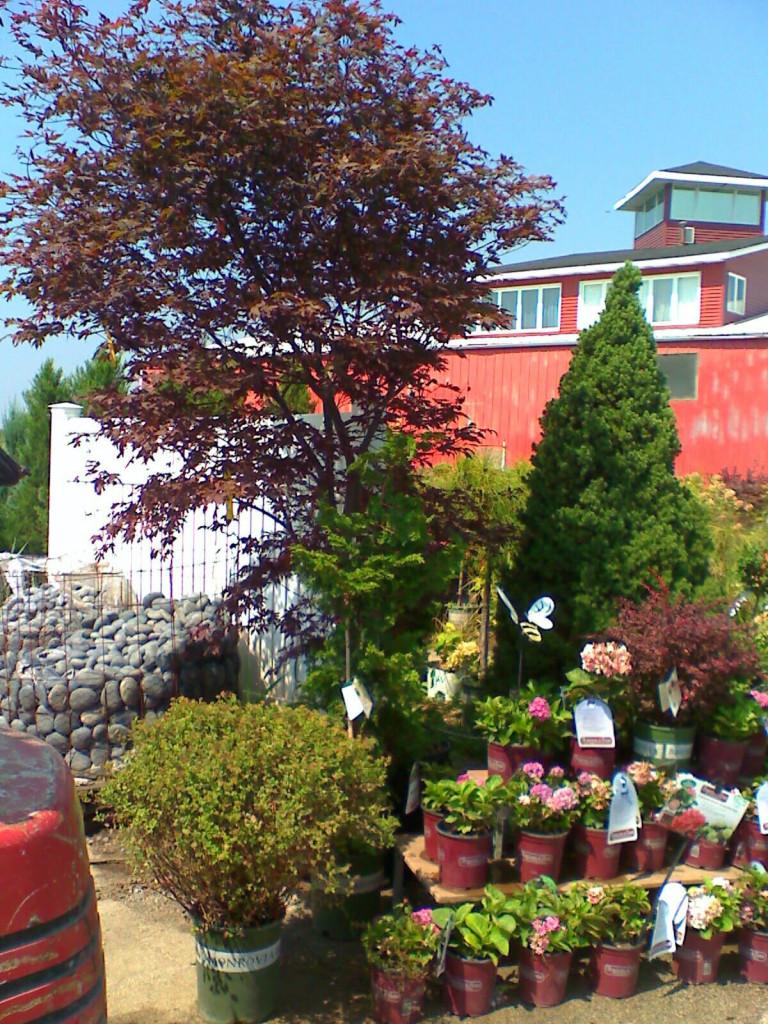 Nursery, Garden Center and Landscaping Stone