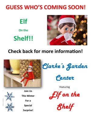 elf on the shelf promotion